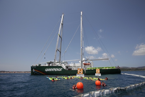 greenpeace (3)